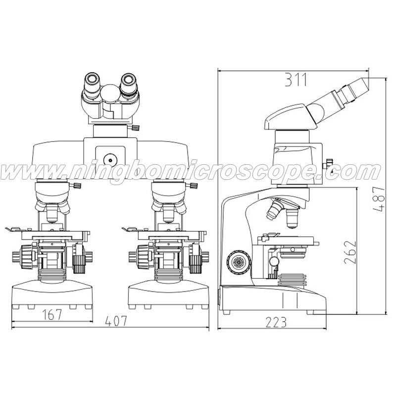 Ningbomicroscopehonyumicroscopemicroscopeschina microscope description and notes ccuart Gallery